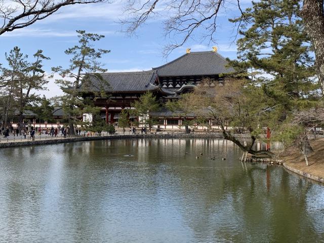 鏡池越しの東大寺大仏殿