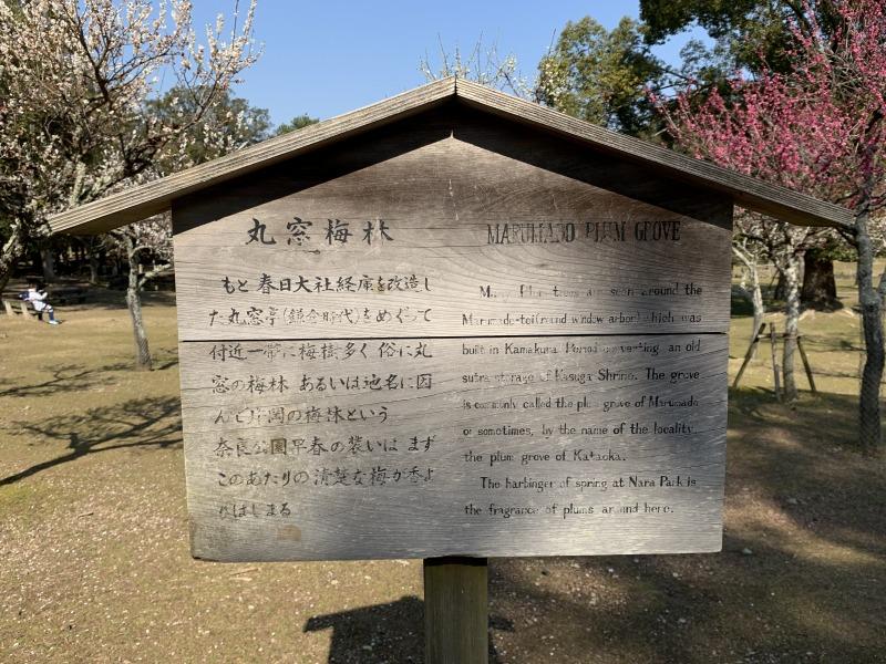 丸窓梅林(円窓梅林) の立て看板