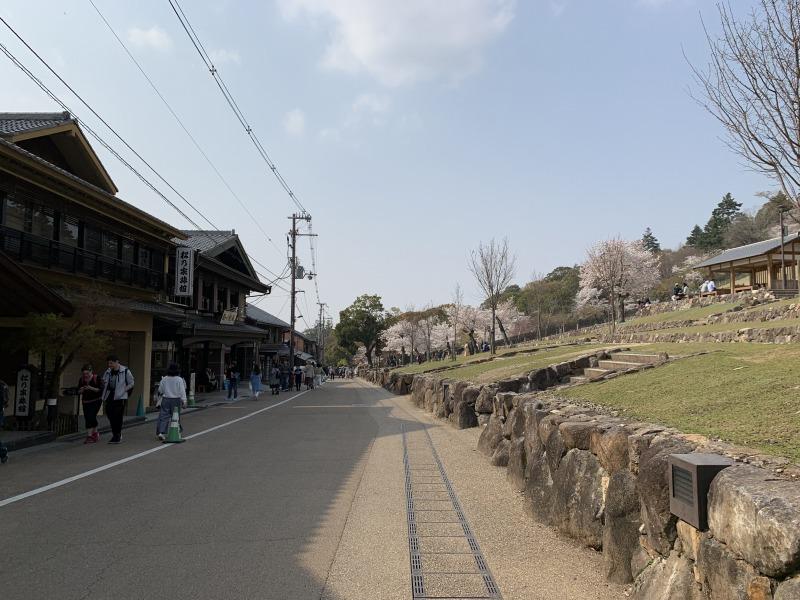 若草山の麓の春日大社から続く道