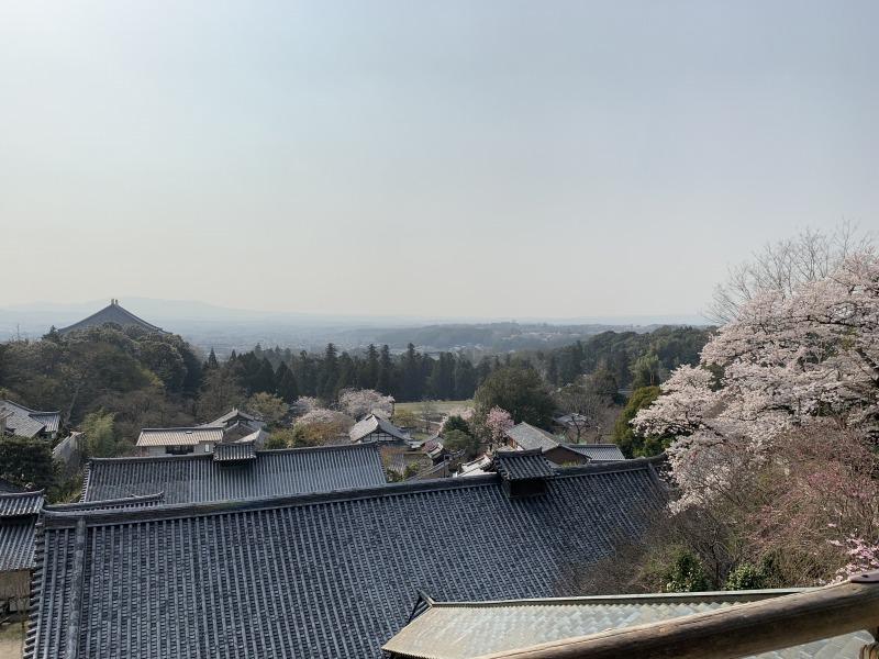 二月堂からの桜の風景