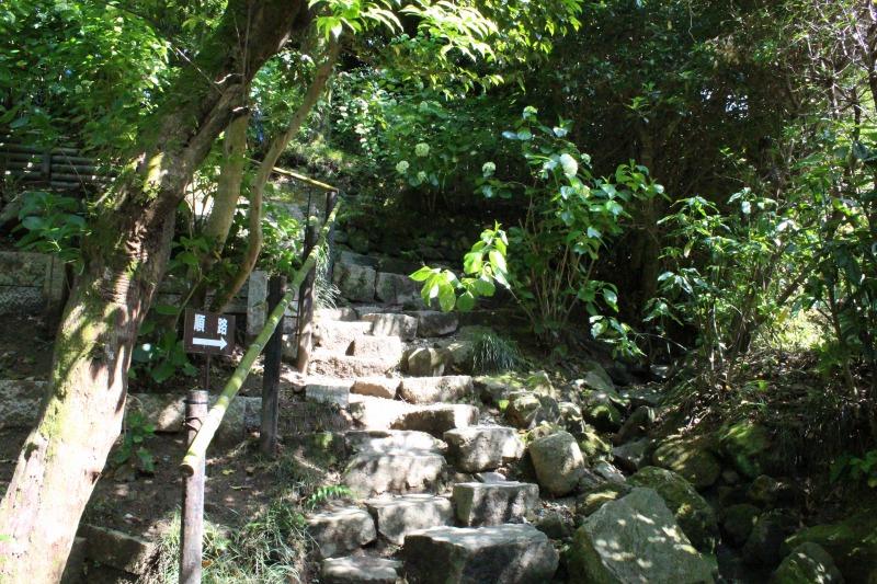 矢田寺のあじさい大庭園の急階段